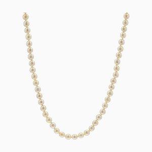 Französische Lange Akoya Zuchtperlen Halskette