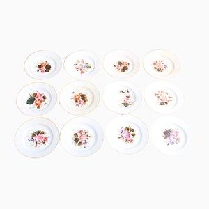 Platos para tartas antiguos con motivos florales. Juego de 12