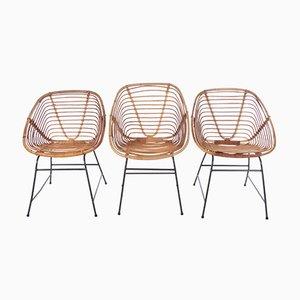 Vintage Bamboo Chairs in the Style of Dirk van Sliedrecht, 1960s, Set of 3