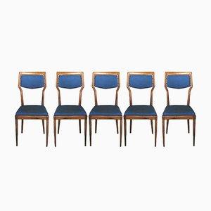 Mid-Century Stühle in Blau & Holz von Vittorio Dassi, 1950er, 5er Set