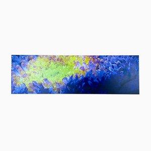 Estantería de pared Audire de Winfried Becker, 2000