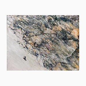 Diao Qing-Chun, Arte chino contemporáneo, Serie the Landscape No.7 2020