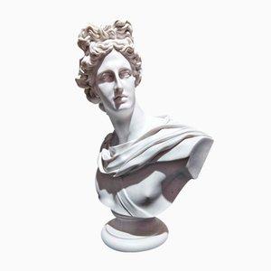 Apollo Belvedere Büste