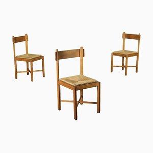 Sedia da pranzo in legno di faggio