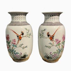 Chinese Birds of Paradise Vases, Set of 2