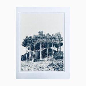 Lithografie, Duinen, Cees Vlag, 1987