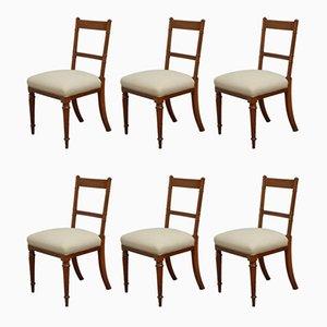 19th Century Walnut Dining Chairs, Set of 6