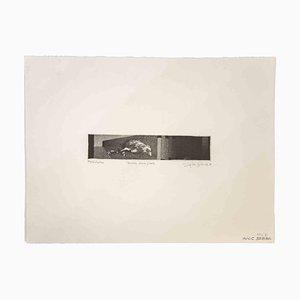 Unbekannt, Vogel, Druck, 1980