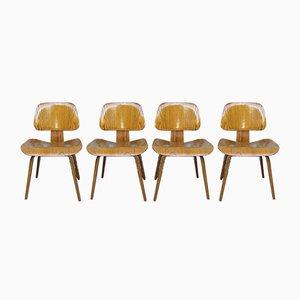 Eschenholz DCW Stühle von Charles & Ray Eames für Evans / Herman Miller, 1940er, 4er Set