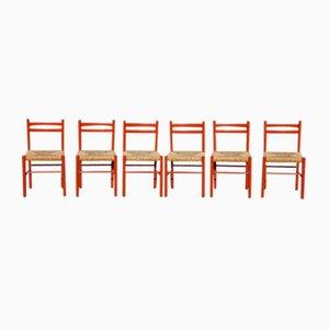 Italienische Carimate Stühle aus rotem Holz & Papierkordel von Vico Magistretti, 1960er, 6er Set