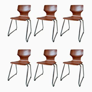Vintage Chairs from Pagholz Flötotto, Set of 6