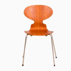 Chaise Fourmi 3101 Vintage en Teck par Arne Jacobsen pour Fritz Hansen, Danemark, 1960s