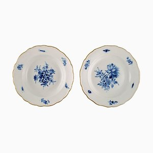 Antique Meissen Porcelain Plates with Hand-Painted Flowers and Gold Edge, Set of 2