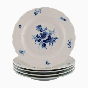 Five Antique Meissen Porcelain Dinner Plates with Hand-Painted Flowers, Set of 5