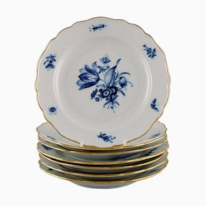 Antique Meissen Porcelain Plates with Hand-Painted Flowers, Early 20th Century, Set of 7