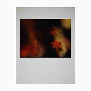 Harold Miller Null, Photographic Exhibition Print, 1988