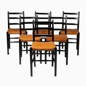 Sedie da pranzo Novo di Arne Jacobsen per Fritz Hansen, Danimarca, 1935, set di 6