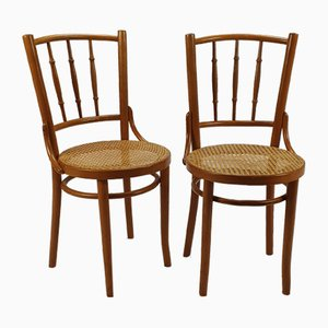 Romanian Cane and Birch Bentwood Chairs, 1960s, Set of 2