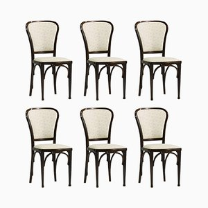 Dining Chairs by Gustav Siegel for Thonet, 1910, Set of 6