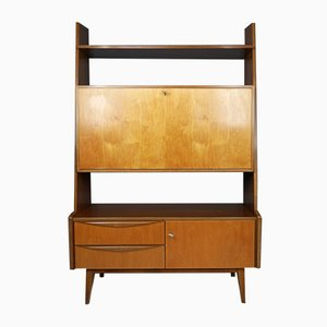 Walnut and Maple Cabinet, Germany, 1950s