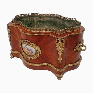 19th Century Rosewood and Bronze Planter from Sèvres Porcelain Medallions