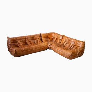 Pine Leather Togo Living Room Set by Michel Ducaroy for Ligne Roset, 1970s, Set of 3
