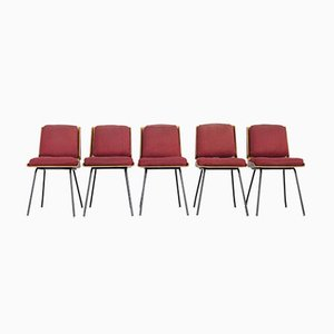 Lucania Dining Chairs by Giancarlo De Carlo for Arflex, Italy, 1954, Set of 8