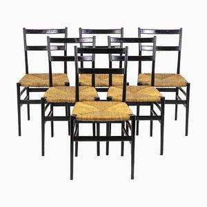 Black Lacquered Superleggera Chairs by Gio Ponti, 1950s