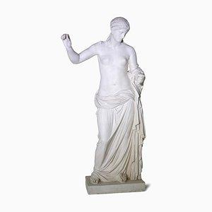 Sculpture de l'Académie de Vénus d'Arles