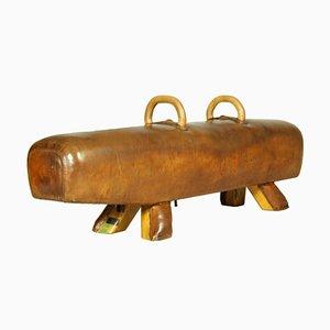 Vintage Leather Pommel Horse or Bench