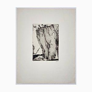 Horst Janssen, Felsen, handsigniert, Artist Proof