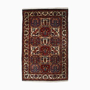 Bakhtiari Dark Red Rug with Border and Field Pattern