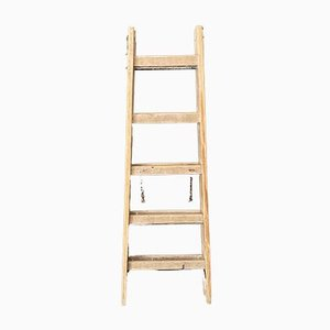 Antike Leiter
