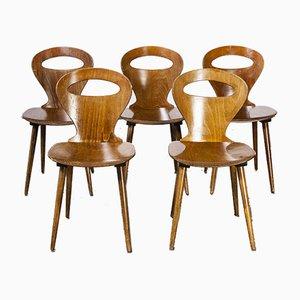 French Baumann Fourmi Dining Chair, 1950s, Set of 5