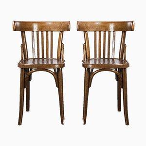 Bugholz Esszimmerstühle aus dunklem Nussholz, 1950er, 2er Set