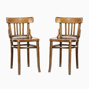 Bugholz Esszimmerstühle, 1950er, 2er Set