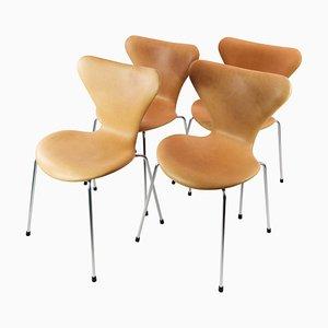 Modell 3107 Esszimmerstühle von Arne Jacobsen und Fritz Hansen, 1973, 4er Set
