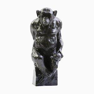 Bronze Schimpanse Socrate and His Turtle von Damien Colcombet, Frankreich
