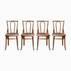 Böhmischer Stuhl aus geschwungenem Holz