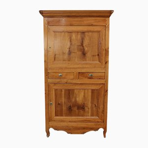 Louis XV or Louis Philippe Transition Style Solid Cherry Cabinet, Mid-19th Century