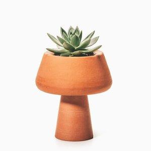 Conterrâneos Vase by Brunno Jahara