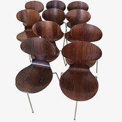 Erstausgabe Ant Chairs von Arne Jacobsen für Fritz Hansen, 1950er, 10er Set