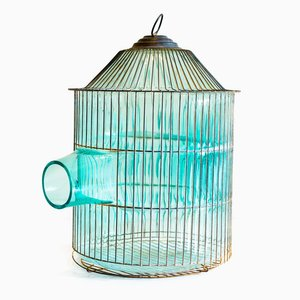 Out of the Cage (Turquoise Pagoda) von Gala Fernández