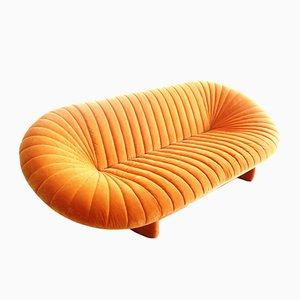 Re Sole Sofa von Sergio Giobbi für Giovannetti