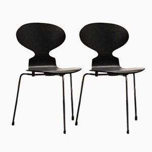 Ant Stühle von Arne Jacobsen für Fritz Hansen, 1974, 2er Set