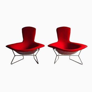 Bird Stühle mit hoher Lehne von Harry Bertoia für Knoll, 1980er, 2er Set