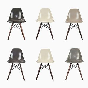 Vintage DSW Chairs by Charles and Ray Eames for Herman Miller, Set of 6