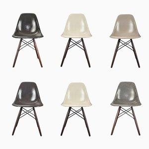 Vintage DSW Stühle von Charles & Ray Eames für Herman Miller, 6er Set
