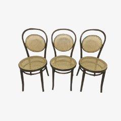Chaises de Café Daum de Thonet, Set de 3
