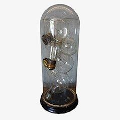 Domo vintage redondo de vidrio con bombillas industriales